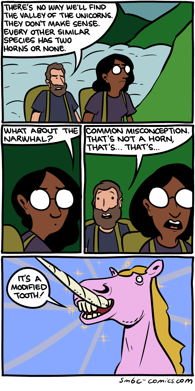 Narwhal and unicorn cartoon narwhal jokes funny pictures - Http Www Smbc Comics Com Comics 20140912 Png
